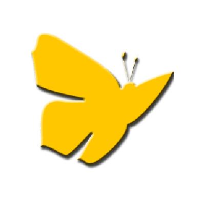Kuvassa on Perhon kunnan tunnus perhonen.